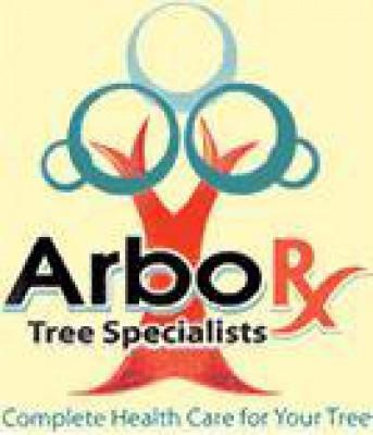ArborX